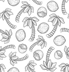 Doodle palm coconut pattern seamless vector