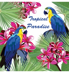 Exotic card with parrot birds and flowers vector image