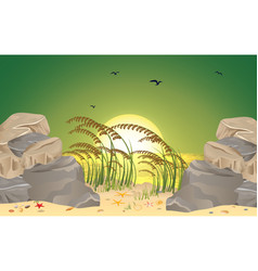 landscape sunset on beach vector image