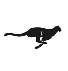 running cheetah silhouette monochrome color vector image