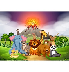 Wild animals in the field with volcano background vector