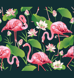 flamingo bird and tropic flowers background vector image vector image