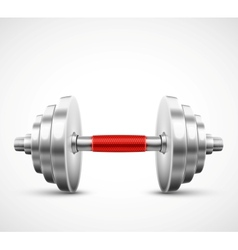 Isolated dumbbell vector image vector image