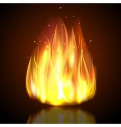 Fire On Dark Background vector image