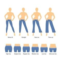 Women Jeans Types Set vector image