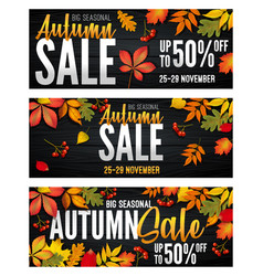 advertising banners set - autumn sale at end vector image