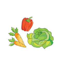color vegetables icon vector image