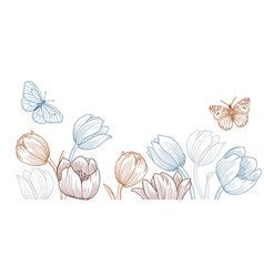 drawing spring template with tulip flowers vector image