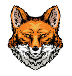 fox head hand drawn style vector image