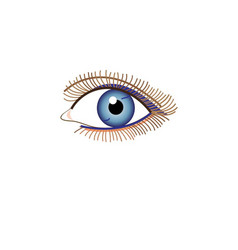 sign beautiful eye looking at vector image