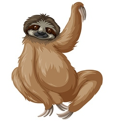 Sloth lifting one arm up vector