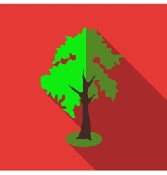 Fluffy tall tree icon flat style vector image