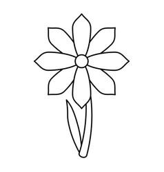 gerbera flower spring ornament thin line vector image vector image