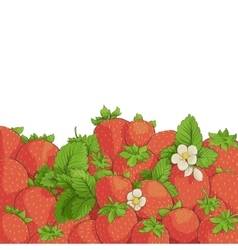 fresh tasty strawberries vector image vector image