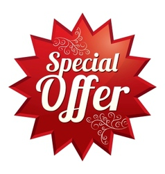 Special offer price tag Icon for sale vector image vector image