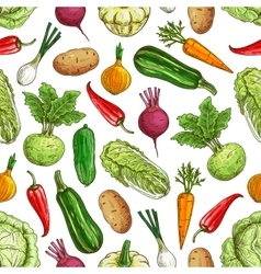 Vegetarian seamless pattern with vegetables vector image vector image