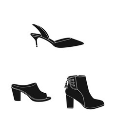 design of footwear and woman icon vector image