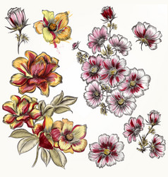 Hand drawn flowers in engraved watercolor style vector