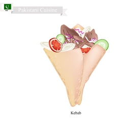 Kebab One of Most Famous Dish in Pakistan vector