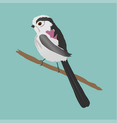 Long-tailed bushtit vector