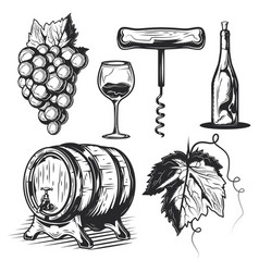 set winemaking elements vector image