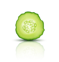 slice juicy cucumber isolated on white background vector image