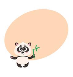 cute smiling baby panda character holding bamboo vector image