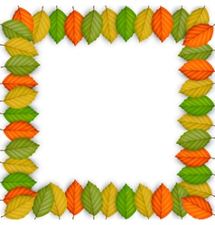 Frame of colored leaves vector image vector image