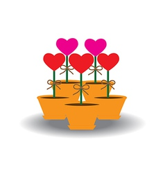 Card Heart in pots vector image