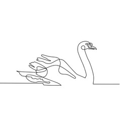 continuous one line drawing beautiful swan vector image