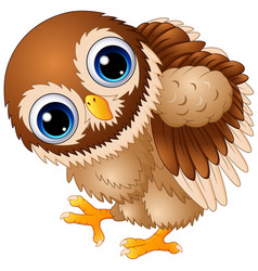 Cute baby owl cartoon walking vector
