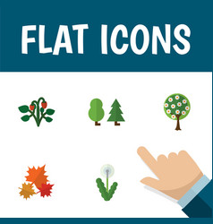 flat icon nature set of canadian floral forest vector image