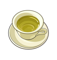Hand drawn china porcelain cup of green tea drink vector