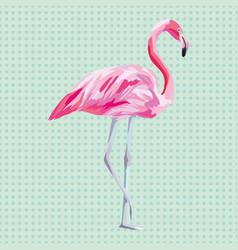 isolated pink flamingo aqua mint background vector image