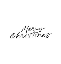 merry christmas modern brush calligraphy vector image