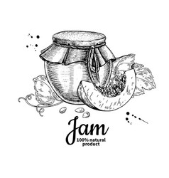 Pumpkin jam glass jar drawing jelly and vector