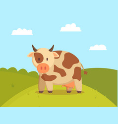 spotted cow graze on lawn vector image
