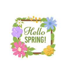 spring flowers background beautiful floral vector image