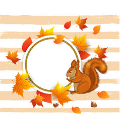 squirrel and orange maple leaves vector image