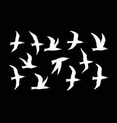 websea gulls silhouette set vector image