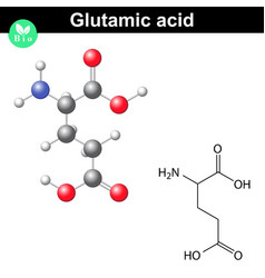 Glutamic acid chemical structure vector image