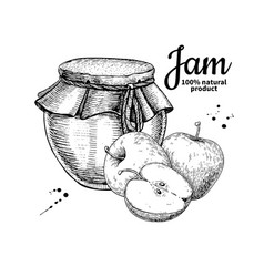 Apple jam glass jar drawing fruit jell vector