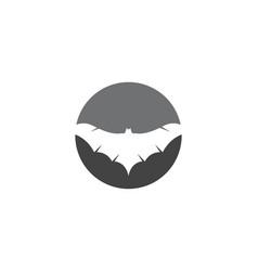 bat icon logo template vector image