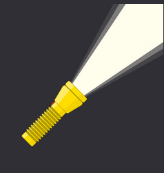 flashlight and light beam vector image