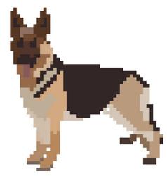 german shepherd pixel art top vector image