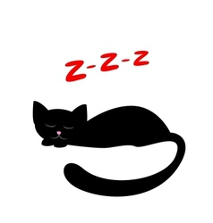 sleeping black cat vector image