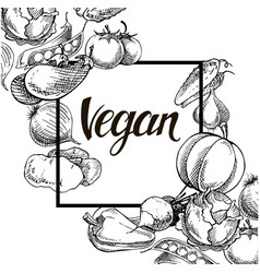 vegan food concept hand drawn vector image vector image