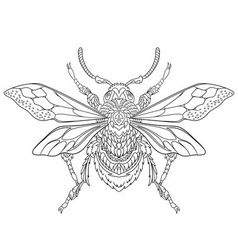 Entangle stylized cartoon beetle insect vector