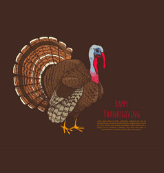 Happy thanksgiving day poster with animal vector