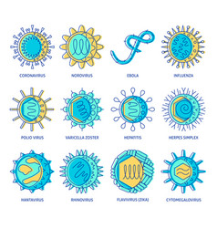 human virus types icon set in colored line style vector image
